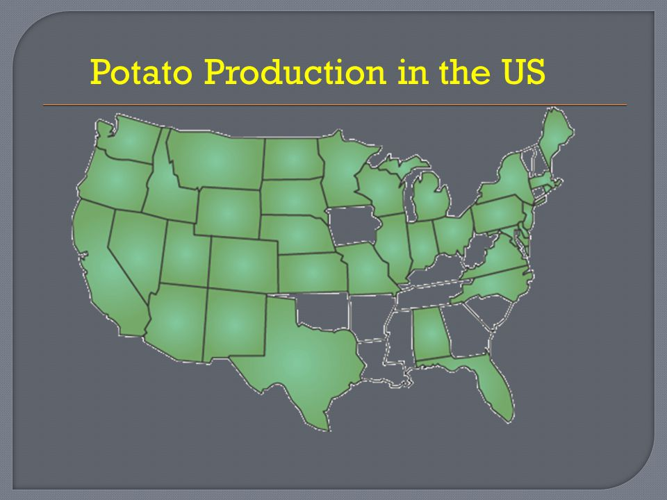  FACTS Potatoes are grown in 37 North American states In 2009, over 1 million acres of potatoes were planted The 2009 crop yield was 43 billion pounds of potatoes, that's about 95,000 Statue's of Liberty.