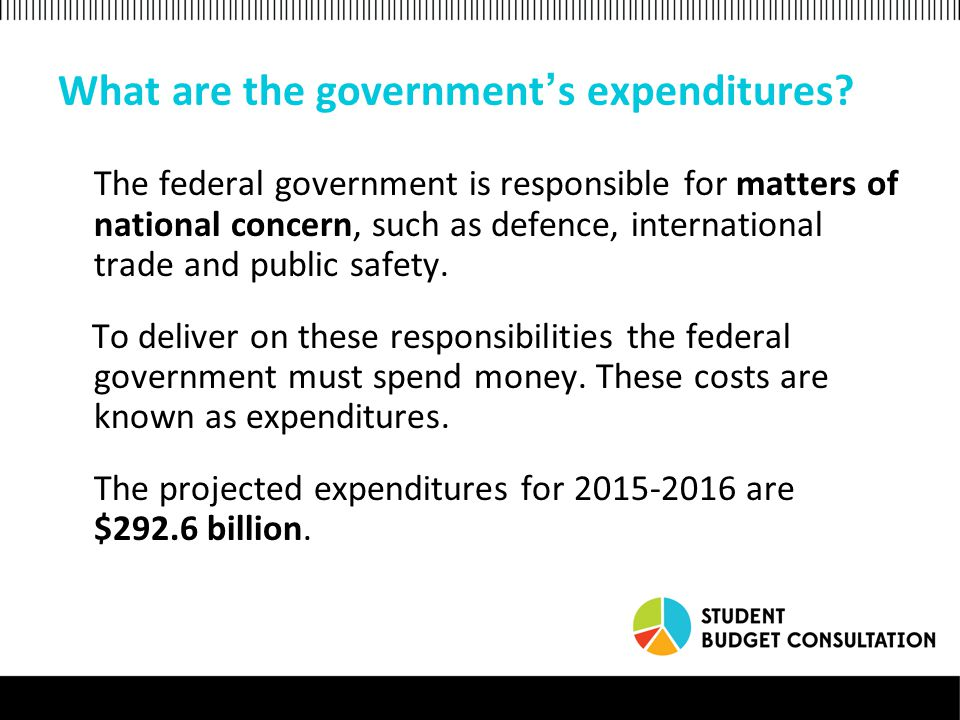 What are the government ' s expenditures.