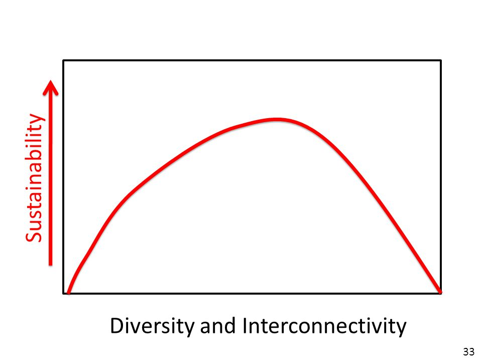 33 Diversity and Interconnectivity Sustainability