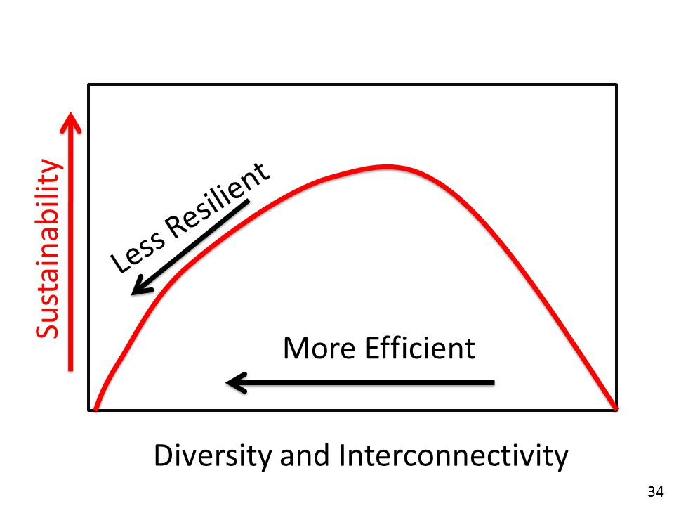 34 Diversity and Interconnectivity Sustainability Less Resilient More Efficient