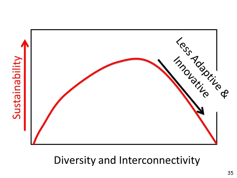 35 Diversity and Interconnectivity Sustainability Less Adaptive & Innovative