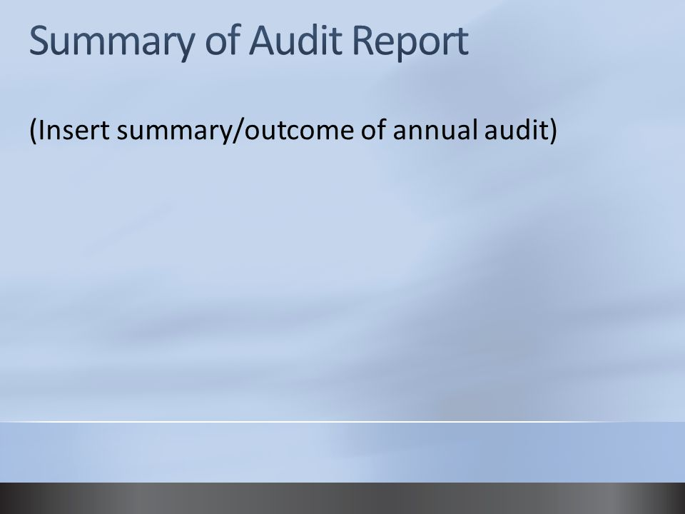 (Insert summary/outcome of annual audit)