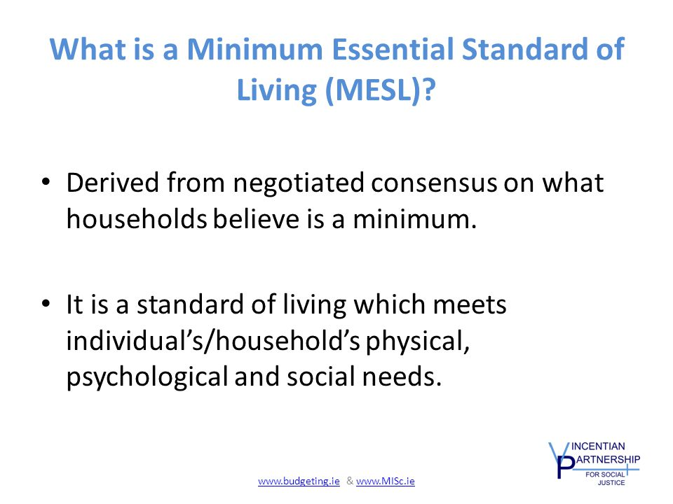 What is a Minimum Essential Standard of Living (MESL).