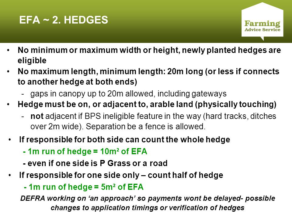 Click to edit Master title style EFA ~ 2. HEDGES No minimum or maximum width or height, newly planted hedges are eligible No maximum length, minimum l