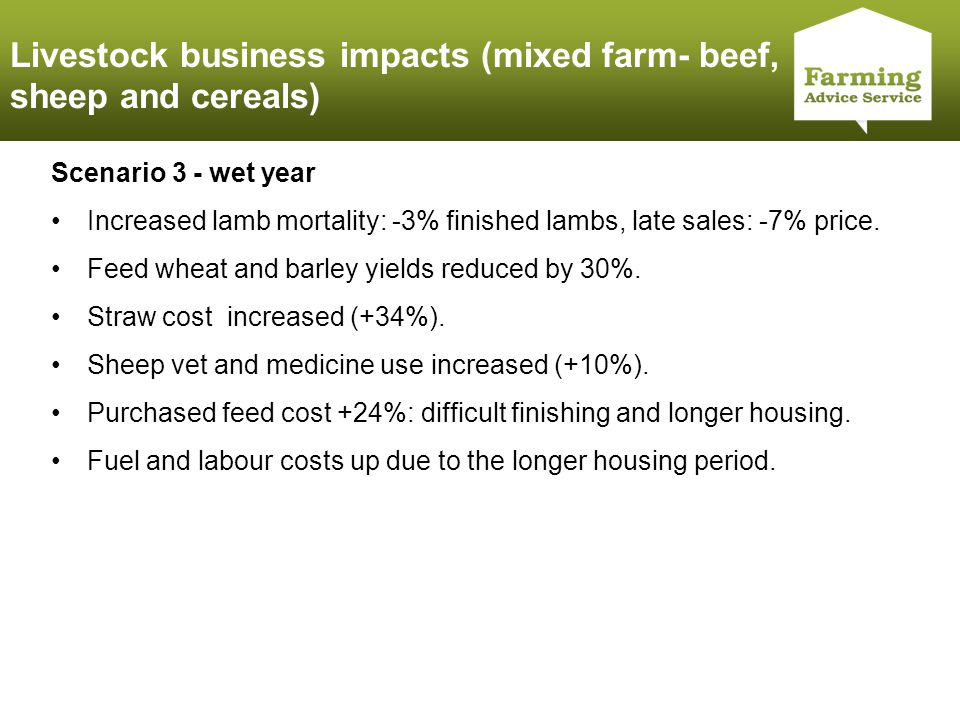Click to edit Master title style Scenario 3 - wet year Increased lamb mortality: -3% finished lambs, late sales: -7% price.