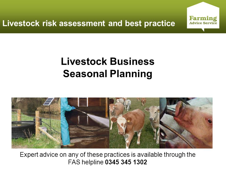 Click to edit Master title style Livestock risk assessment and best practice Livestock Business Seasonal Planning Expert advice on any of these practi