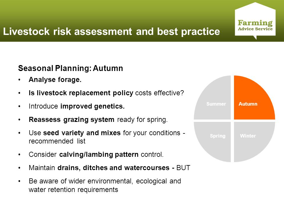 Click to edit Master title style Livestock risk assessment and best practice Summer Autumn WinterSpring Seasonal Planning: Autumn Analyse forage.
