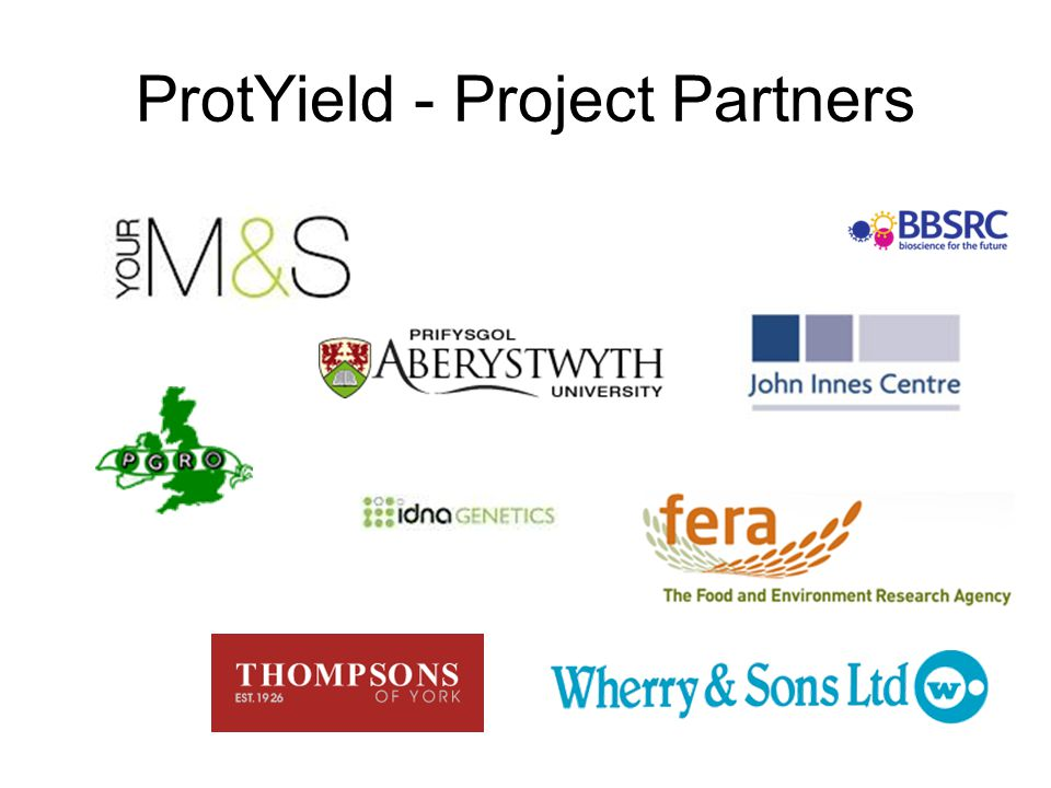 ProtYield - Project Partners