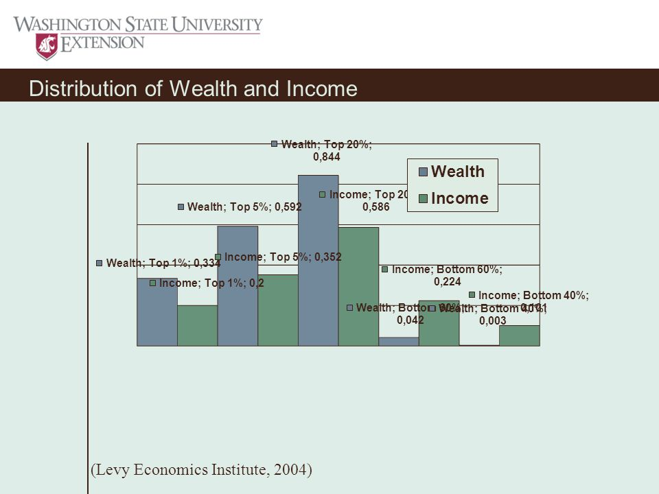 Distribution of Wealth and Income (Levy Economics Institute, 2004)