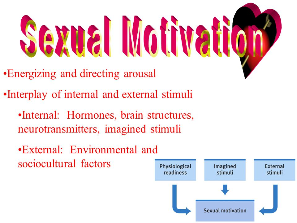 Energizing and directing arousal Interplay of internal and external stimuli Internal: Hormones, brain structures, neurotransmitters, imagined stimuli External: Environmental and sociocultural factors