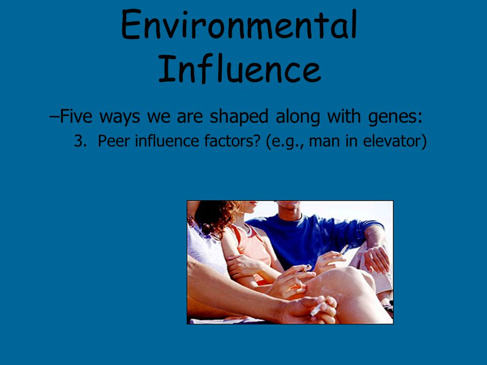 Environmental Influence –Five ways we are shaped along with genes: 3.
