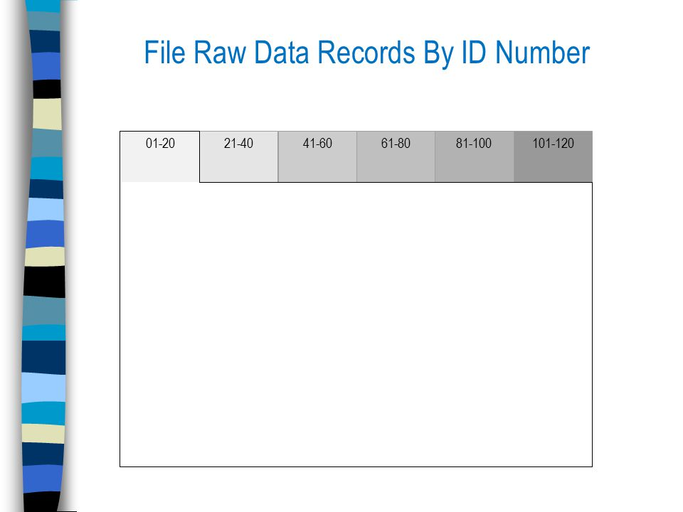File Raw Data Records By ID Number 01-2021-4041-6061-8081-100101-120