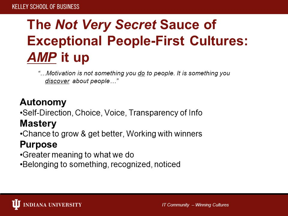 IT Community – Winning Cultures The Not Very Secret Sauce of Exceptional People-First Cultures: AMP it up …Motivation is not something you do to people.