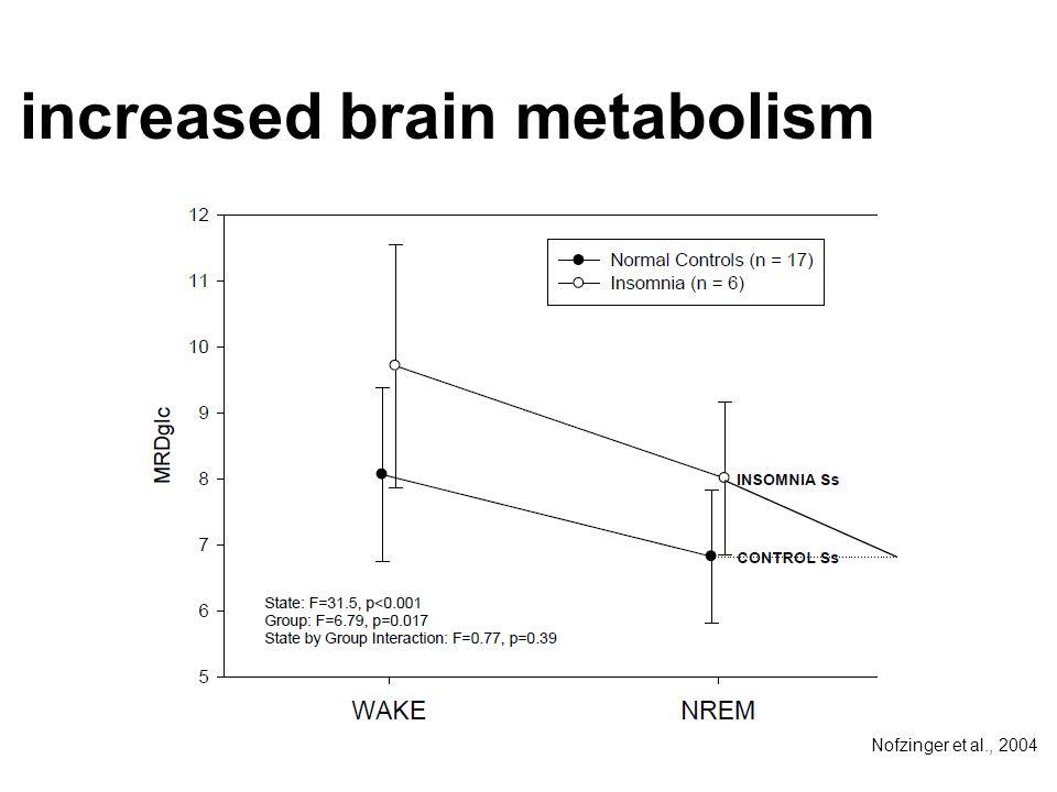 increased brain metabolism Nofzinger et al., 2004