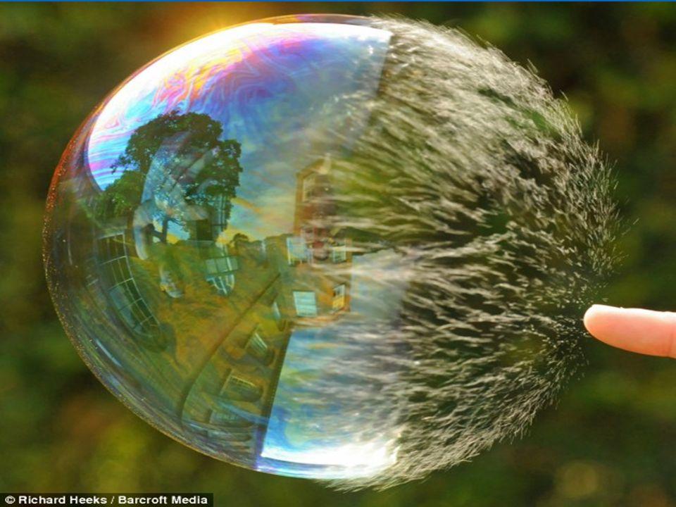 Wedbush Securities - Don Collins Bubble burst