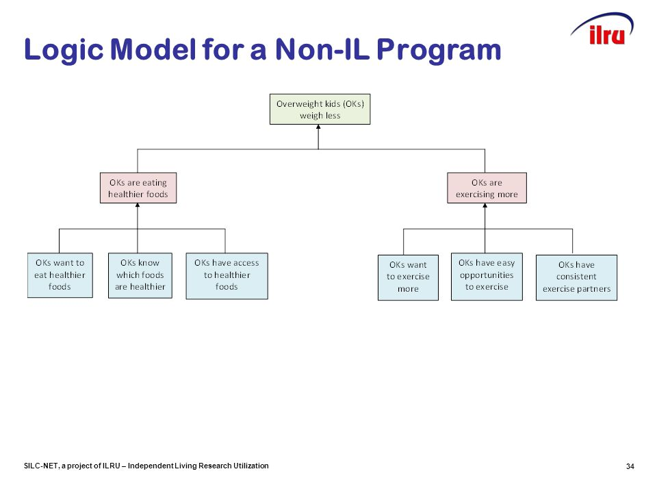 SILC-NET, a project of ILRU – Independent Living Research Utilization Logic Model for a Non-IL Program 34