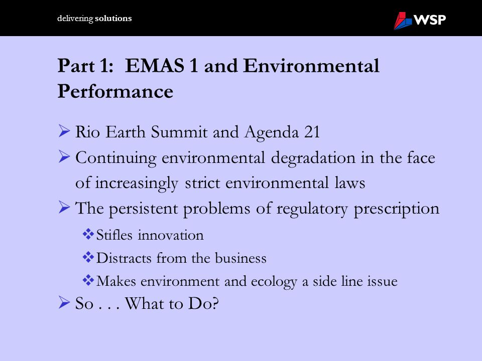 delivering solutions Part 3: The Foundation for EMAS II – the Sustainabitlity Debate and the Pendency of Earth Summit II