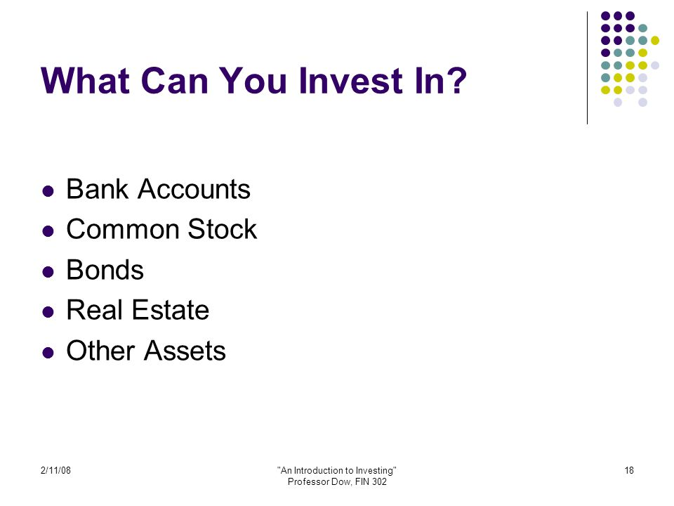 2/11/08 An Introduction to Investing Professor Dow, FIN 302 18 What Can You Invest In.