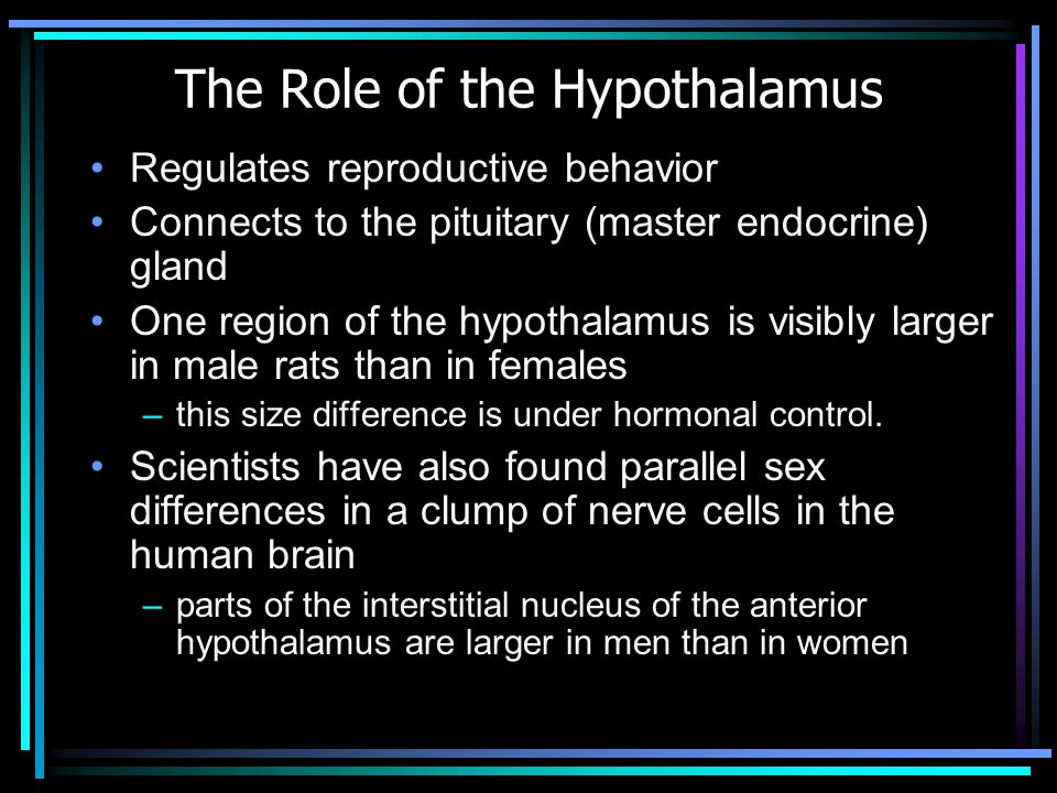 The Role of the Hypothalamus Regulates reproductive behavior Connects to the pituitary (master endocrine) gland One region of the hypothalamus is visibly larger in male rats than in females –this size difference is under hormonal control.