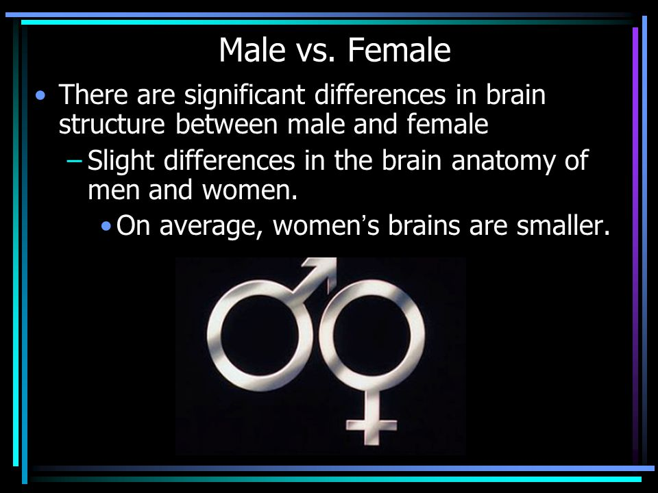 Male vs. Female There are significant differences in brain structure between male and female –Slight differences in the brain anatomy of men and women