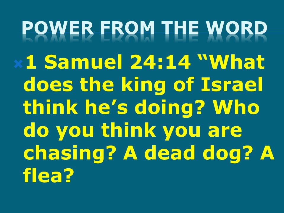  1 Samuel 24:14 What does the king of Israel think he's doing.