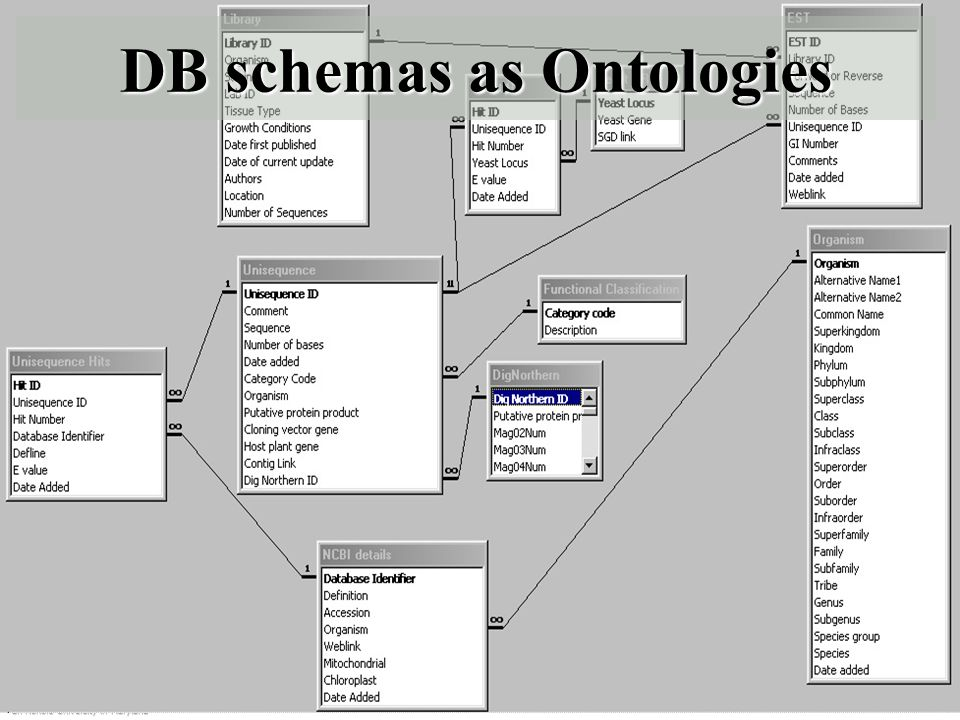 UMBC an Honors University in Maryland 14 DB schemas as Ontologies