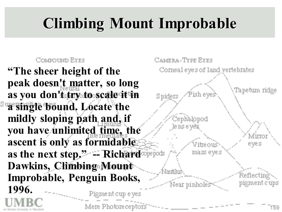 UMBC an Honors University in Maryland 159 Climbing Mount Improbable The sheer height of the peak doesn t matter, so long as you don t try to scale it in a single bound.