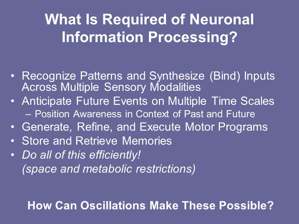 What Is Required of Neuronal Information Processing.