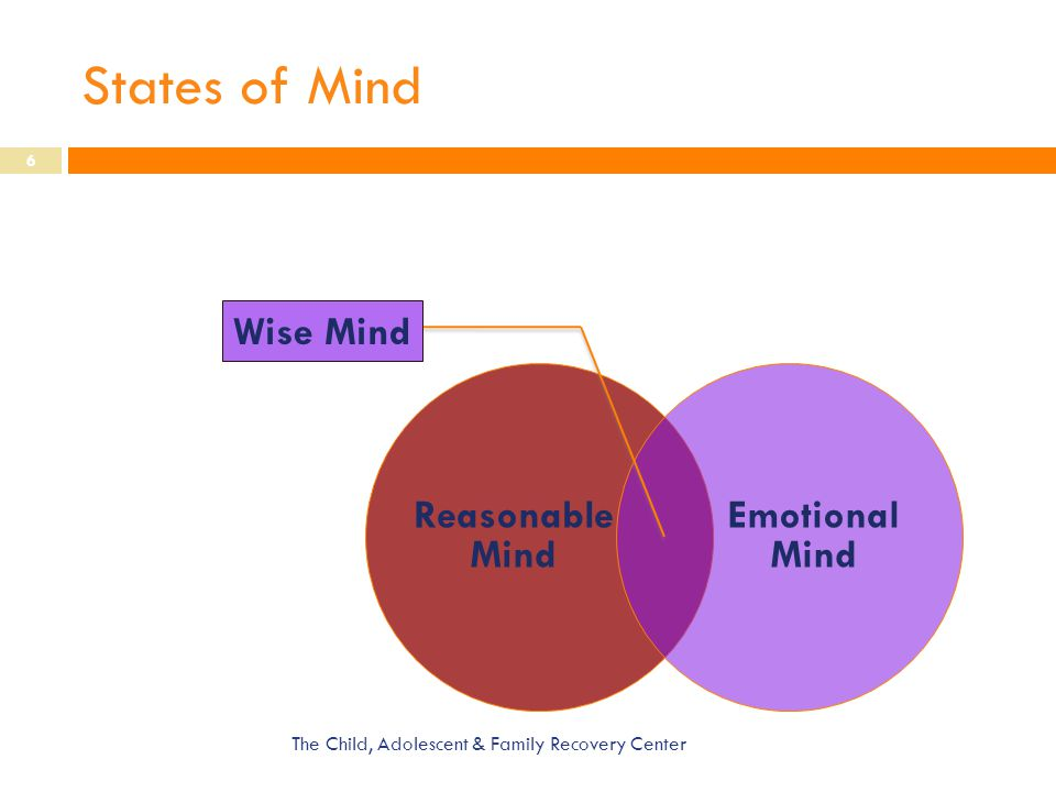 States of Mind The Child, Adolescent & Family Recovery Center 6 Reasonable Mind Emotional Mind Wise Mind