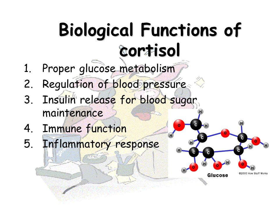Biological Functions of cortisol 1.Proper glucose metabolism 2.Regulation of blood pressure 3.Insulin release for blood sugar maintenance 4.Immune fun