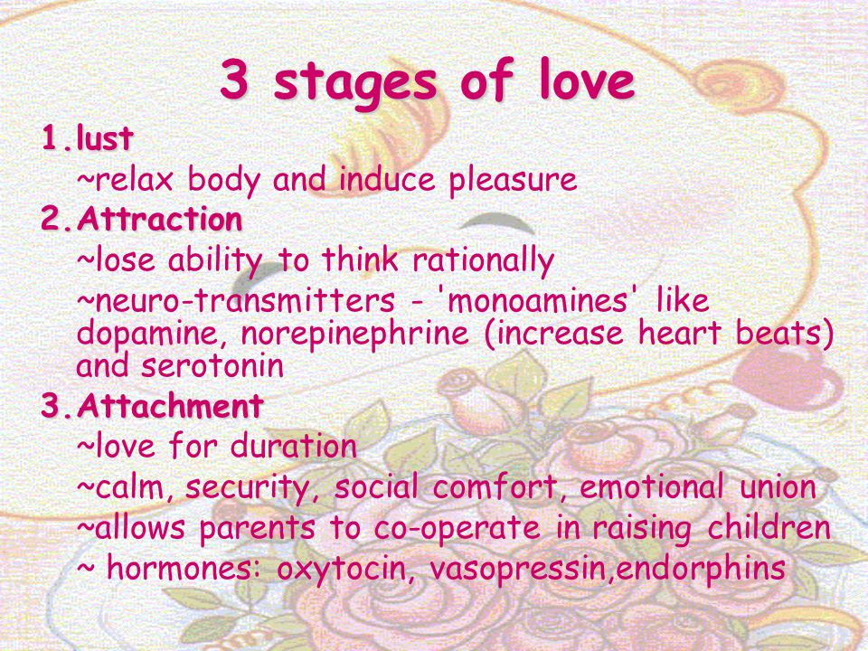 3 stages of love 1.lust ~relax body and induce pleasure 2.Attraction ~lose ability to think rationally ~neuro-transmitters - 'monoamines' like dopamin