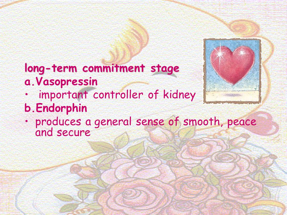 long-term commitment stage a.Vasopressin important controller of kidney b.Endorphin produces a general sense of smooth, peace and secure