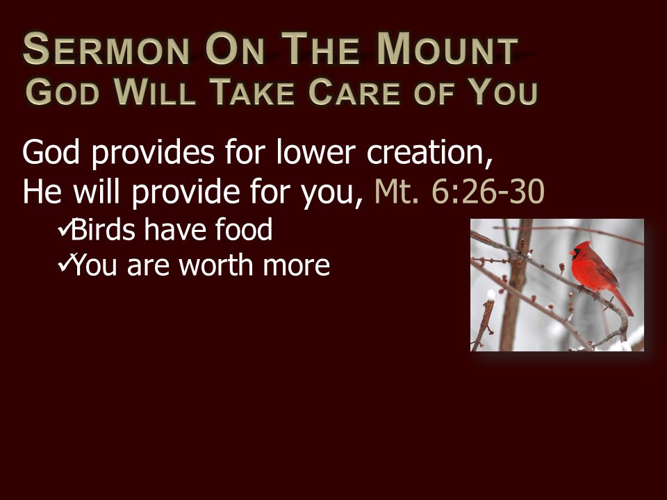 God provides for lower creation, He will provide for you, Mt. 6:26-30 Birds have food You are worth more