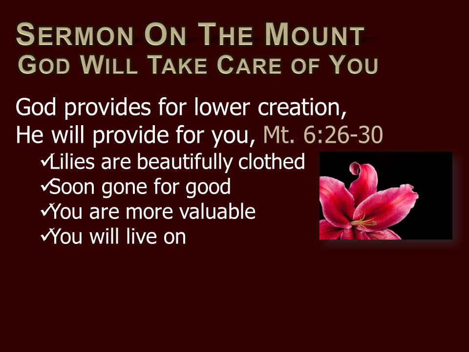 God provides for lower creation, He will provide for you, Mt. 6:26-30 Lilies are beautifully clothed Soon gone for good You are more valuable You will