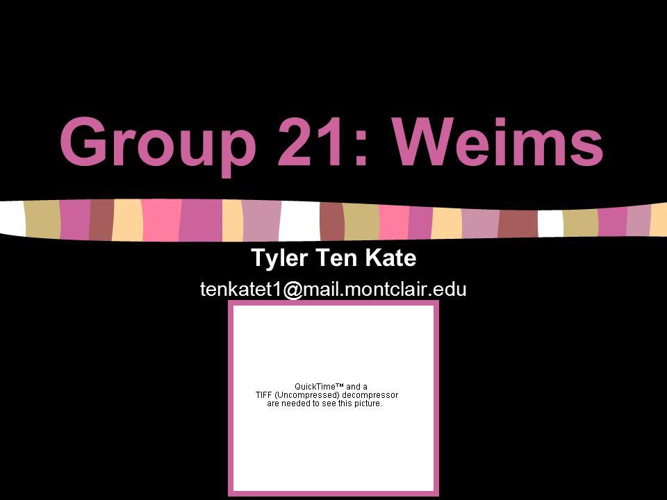Group 21: Weims Tyler Ten Kate tenkatet1@mail.montclair.edu