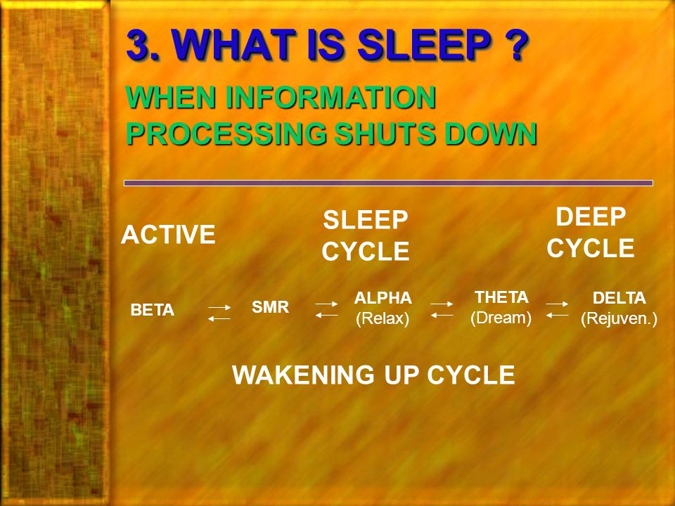 3.WHAT IS SLEEP .