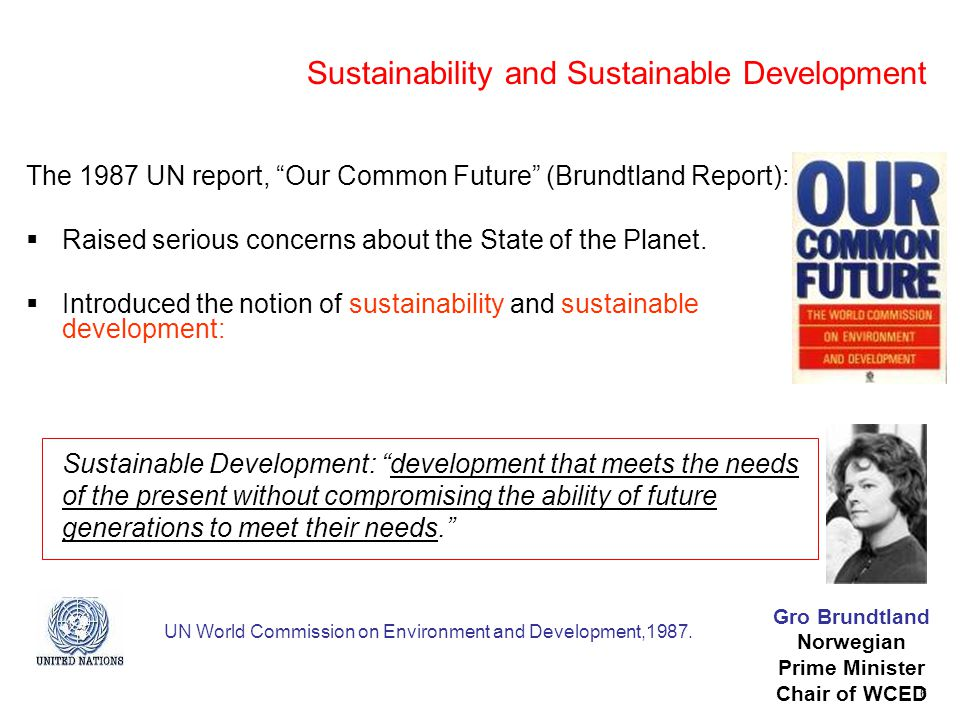 6 Sustainability and Sustainable Development The 1987 UN report, Our Common Future (Brundtland Report):  Raised serious concerns about the State of the Planet.