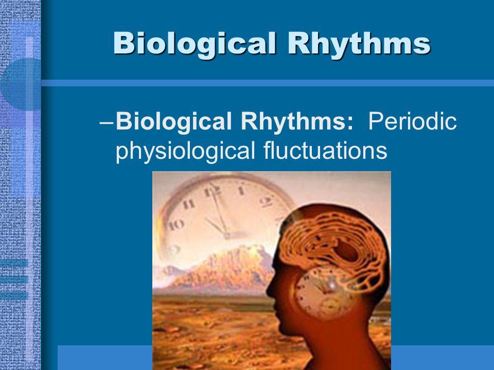 Biological Rhythms –Types of Biological Rhythms Annual Cycles: Examples = hibernation, migration, seasonal affective disorder