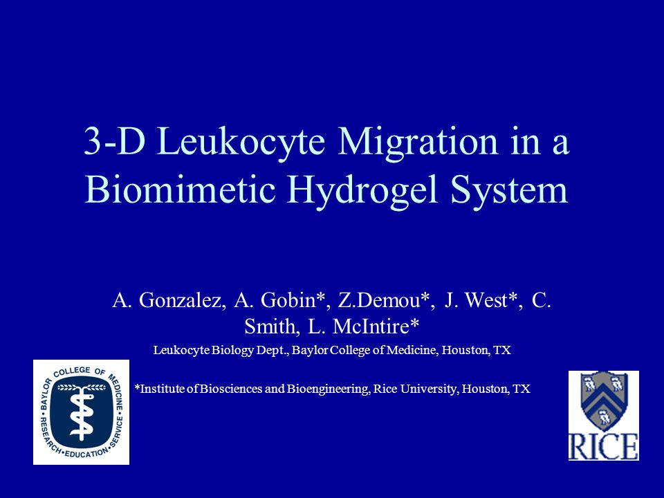 3-D Leukocyte Migration in a Biomimetic Hydrogel System A.