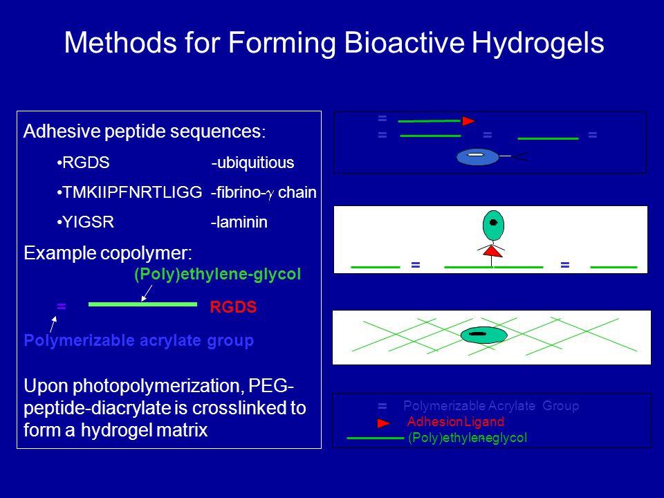 Polymerizable AcrylateGroup AdhesionLigand (Poly)ethylene- glycol == Adhesive peptide sequences : RGDS -ubiquitious TMKIIPFNRTLIGG -fibrino-  chain YIGSR -laminin = RGDS Example copolymer: Upon photopolymerization, PEG- peptide-diacrylate is crosslinked to form a hydrogel matrix = Methods for Forming Bioactive Hydrogels Polymerizable acrylate group (Poly)ethylene-glycol == = =