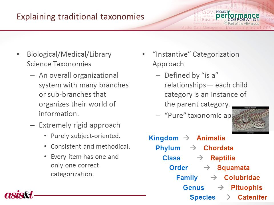 Explaining traditional taxonomies Biological/Medical/Library Science Taxonomies – An overall organizational system with many branches or sub-branches that organizes their world of information.