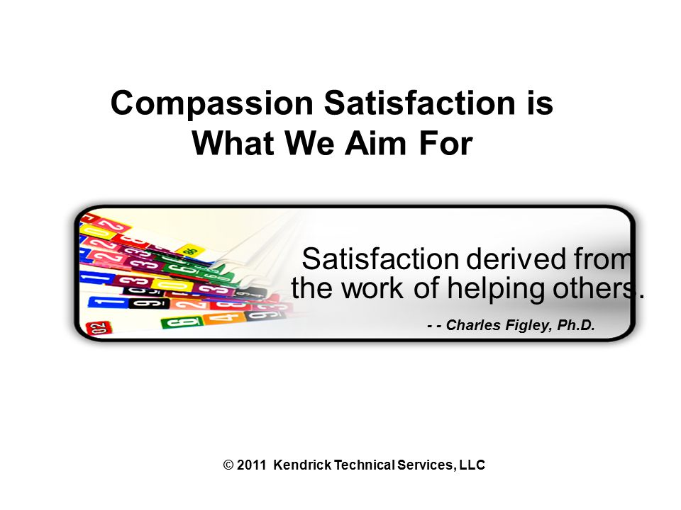 Satisfaction derived from the work of helping others.