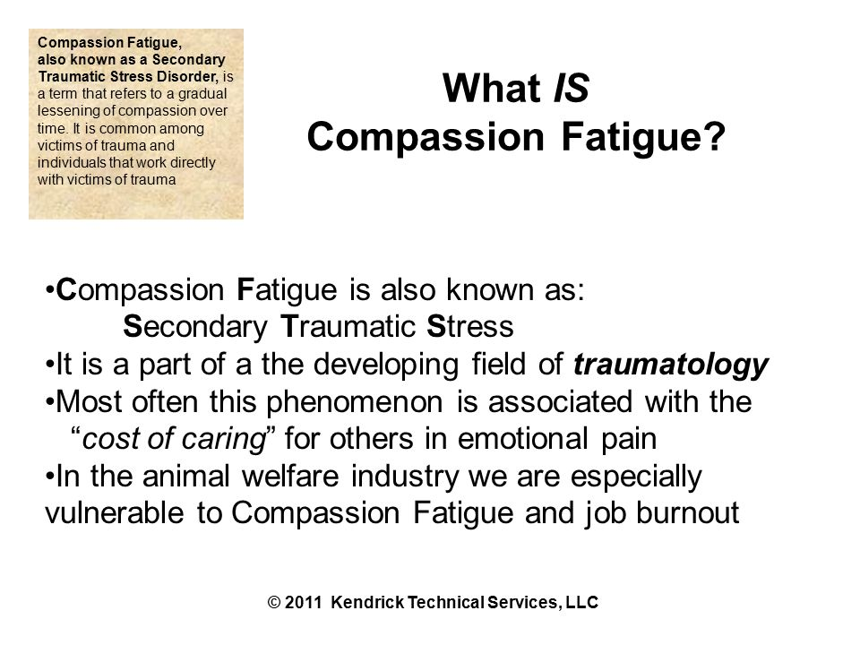 Compassion Fatigue Burnout Symptoms – Work Performance Low morale Low motivation Avoiding tasks Obsess details Apathy Negativity Detachment Poor work commitments Staff conflicts Absenteeism Exhaustion Irritability Withdraw from colleagues Lack of appreciation © 2011 Kendrick Technical Services, LLC