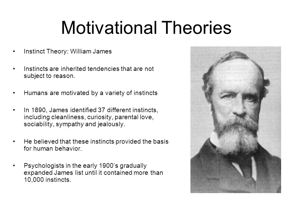 Motivational Theories Instinct Theory: William James Instincts are inherited tendencies that are not subject to reason. Humans are motivated by a vari