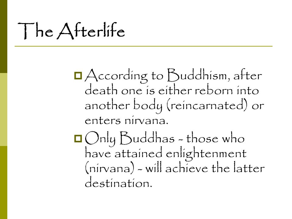 The Afterlife  According to Buddhism, after death one is either reborn into another body (reincarnated) or enters nirvana.  Only Buddhas - those who