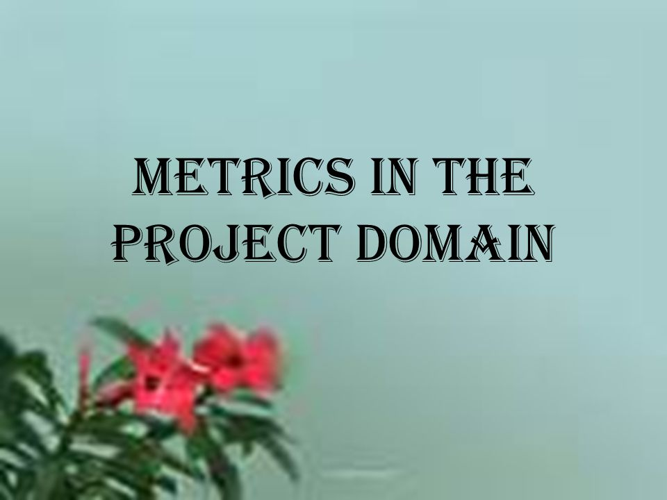 Metrics in the Project Domain