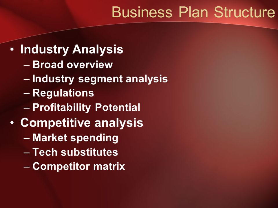 Business Plan Structure Industry Analysis –Broad overview –Industry segment analysis –Regulations –Profitability Potential Competitive analysis –Market spending –Tech substitutes –Competitor matrix