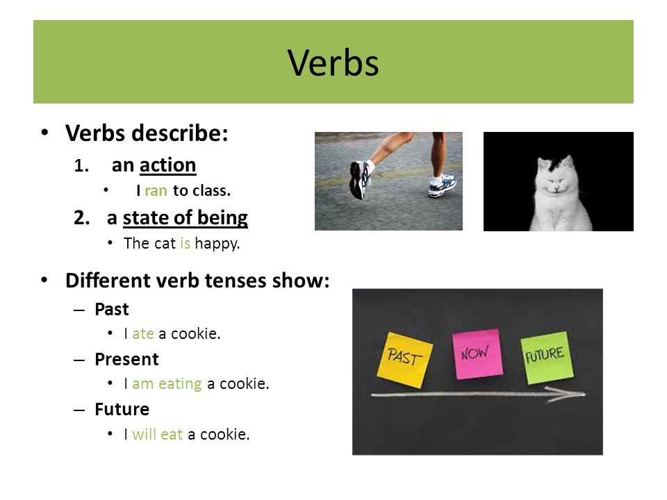 Verbs Verbs describe: 1. an action I ran to class. 2.a state of being The cat is happy. Different verb tenses show: – Past I ate a cookie. – Present I