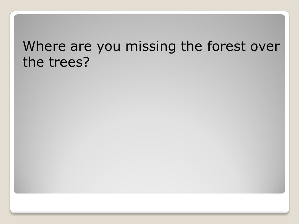 Where are you missing the forest over the trees