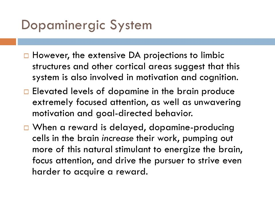 Dopaminergic System  However, the extensive DA projections to limbic structures and other cortical areas suggest that this system is also involved in motivation and cognition.